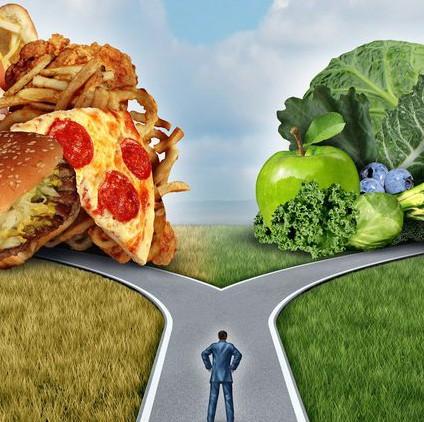 Вегетарианство – как перейти