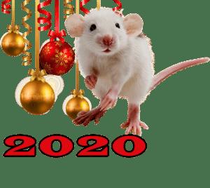 Что нужно готовить на Новый год 2020 - год Белой Металлической Крысы? Что подавать на праздничный стол? Что предпочитает крыса?